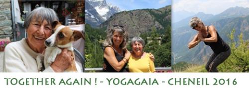 Yogagia-2016-img-1